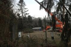 Vellen met Telekraan van 200 bomen op Gasunieterrein
